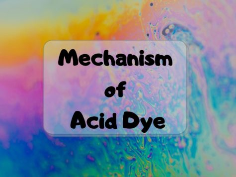 Mechanism of Acid Dye
