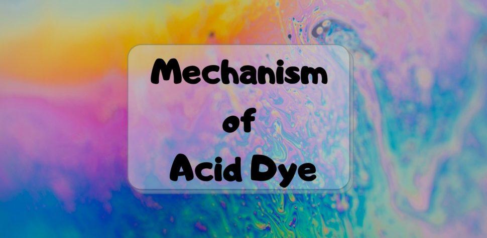 Mechanism of Acid Dye