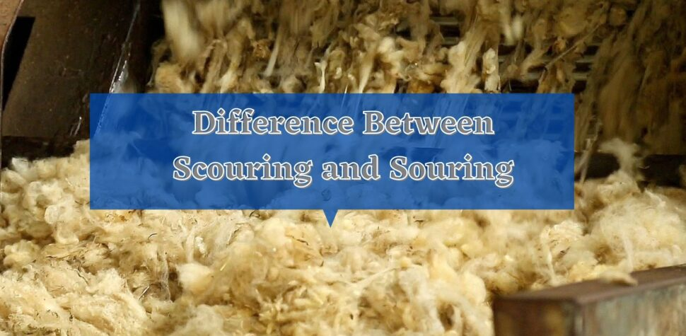 Difference Between Scouring and Souring